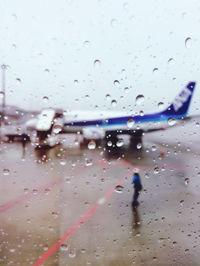 Rain Raindrops Rainy Days Airport Airplane Ana All Nippon Airways Narita NARITAAIRPORT Window Drops Water Water Drops
