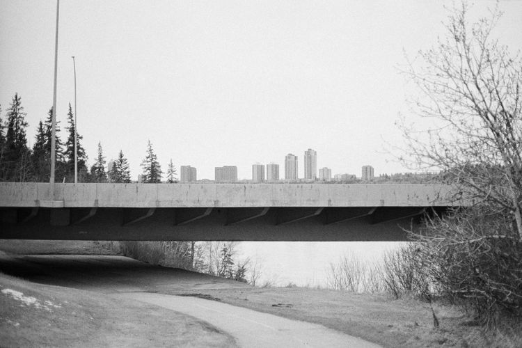 Bridge - Man Made Structure Tree Architecture Day Built Structure Outdoors No People Sky City Nature Trees Tree Forest Film Canon AE-1 Caffenol Blackandwhite Photography Blackandwhite Black And White Black & White Analogue Photography 35mm Film Beauty In Nature Radioactive Spider