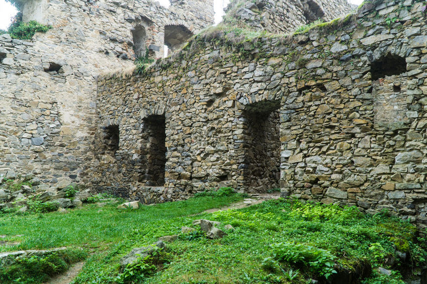 Hrad Helfenburk Architecture Built Structure Castle Day Grass History Hrad Helfenburk Nature No People Outdoors Ruins Tree