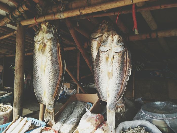 Fischmarkt Seafood 有味道的一张图片
