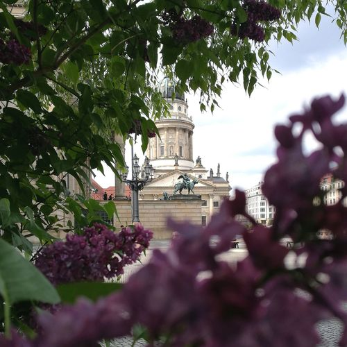 Franzosischer dom seen through trees and flowers