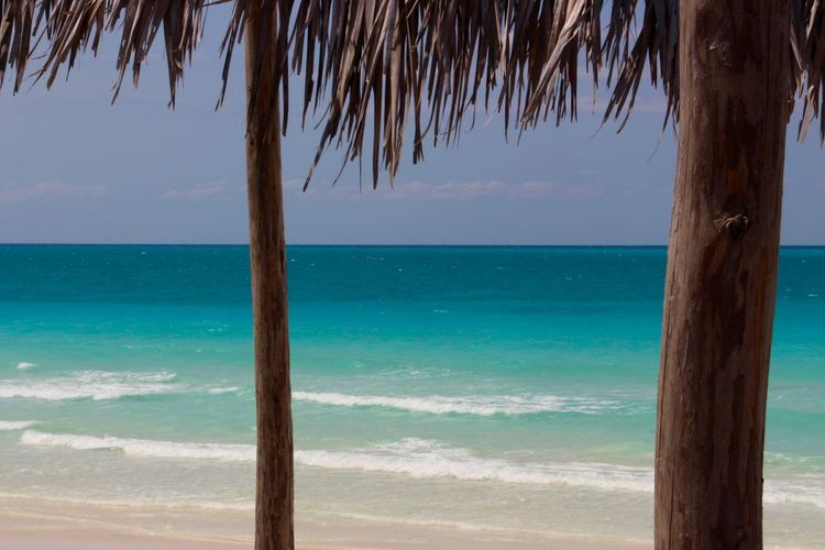 Paradise Beach Beachphotography Blue Blue Wave White Sand White Sand Beach Tropical