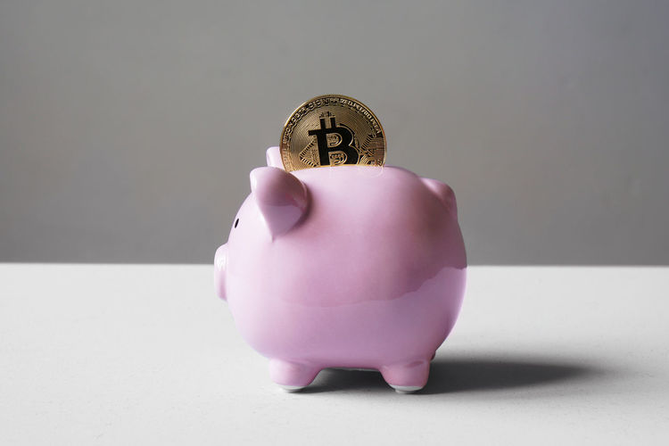 Bitcoin Piggy Bank Piggybank Coin Saving Cryptocurrency Money Money Box Piggy Bank Save Cash Finance Business Wealth Banking Pink Pig Financial Savings Economy Currency Concept Nobody Ceramic Object Moneybox Copy Space Copyspace Virtual Bit  Crypto Cryptography Blockchain Digital Conceptual BTC Physical Cyber Investment Reserve Coin Bank Studio Shot Pink Color Animal Representation Single Object No People Still Life Gray Background
