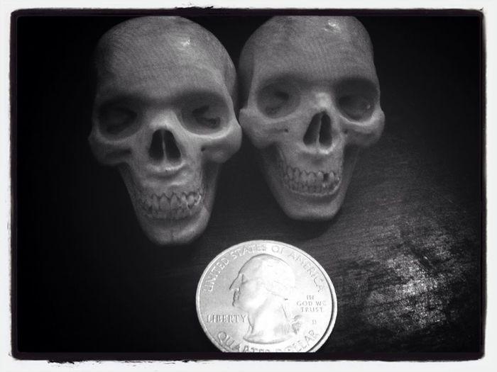 Mini human crâne ??