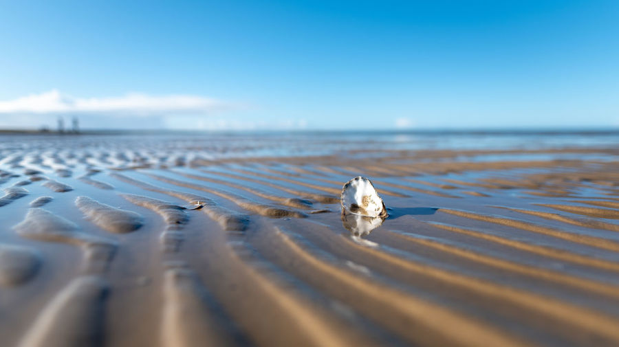 Hoffi99 Sky Nature Outdoors Water Sea Horizon Over Water Horizon Beach Land Scenics - Nature Day Tranquility Tranquil Scene Beauty In Nature Selective Focus No People Copy Space Blue Sand Surface Level