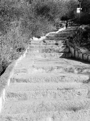 Welcome To Black Steps Stone 1000steps
