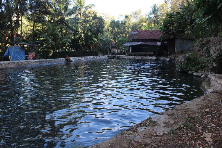 Gombong Jawatengah Kebumen Kebumenmemotret Kolamnatural Natural Pool Pool Travel Destinations