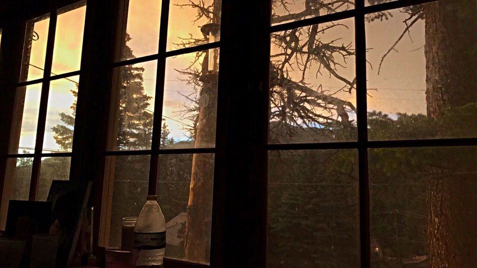 Orange sky out my window 💕 Eye Em Nature Lover The Great Outdoors - 2017 EyeEm Awards EyeEmNewHere EyeEmBestPics EyeEm Gallery Nature Photography Colorado EyeEm Best Shots EyeEm Nature Lover Nature_collection