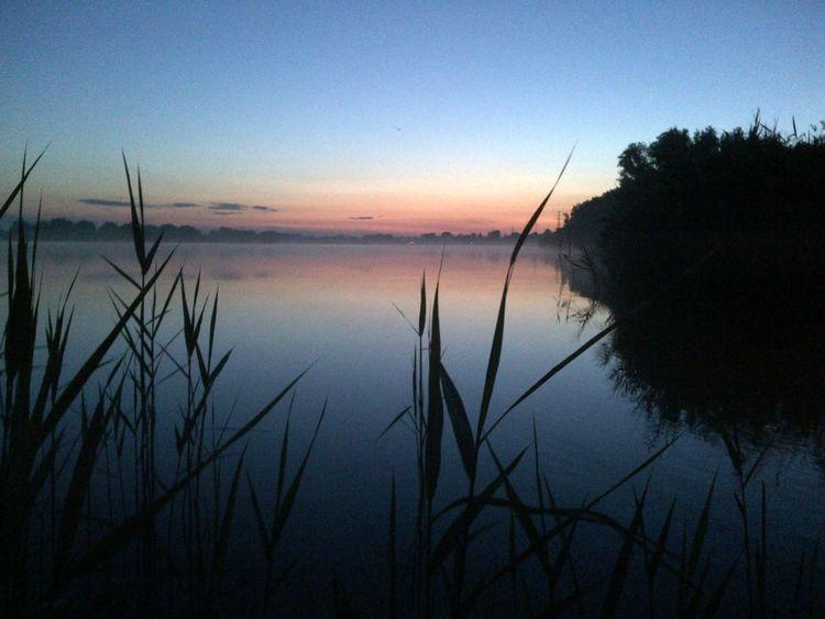 Sommergefühle Summerfeelings SummerNights Jonines Coloursofthenight Sunset Dancingthroughthenight Friendship Precious Moments Lake Horizon Over Water Plants