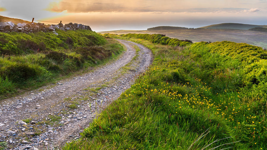 Stone Wall Sea Hills Isle Of Man Round Table Golden Hour Grass Scenics - Nature Plant Beauty In Nature Tranquil Scene Tranquility Sky Land Nature Environment Landscape No People Water Green Color Cloud - Sky Day Outdoors Non-urban Scene Field Growth Trail Yellow Flowers