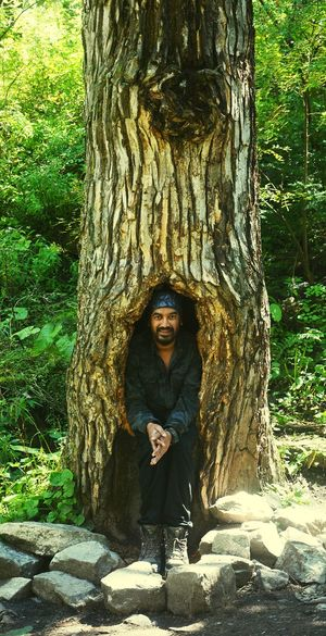 Portrait of man standing by tree trunk in forest