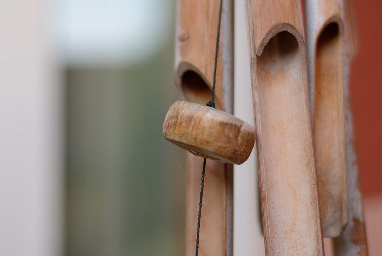 Silence Wood -