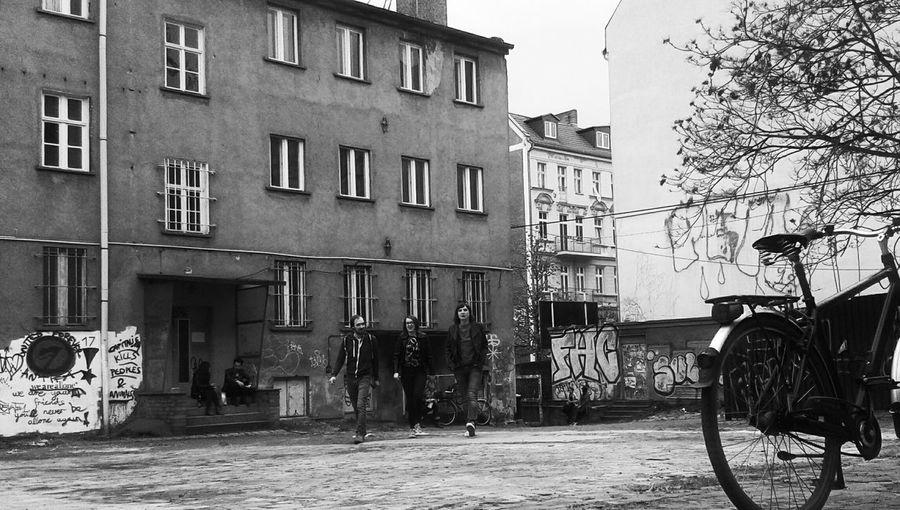 Urban Decay My
