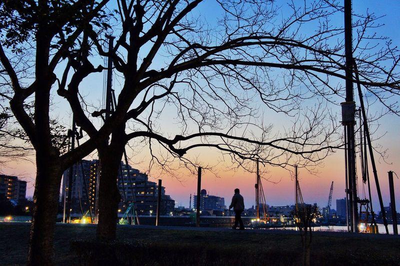 EyeEMで初VSCO Sunset Sunset_collection Sunset Silhouettes Riverside Shillouette
