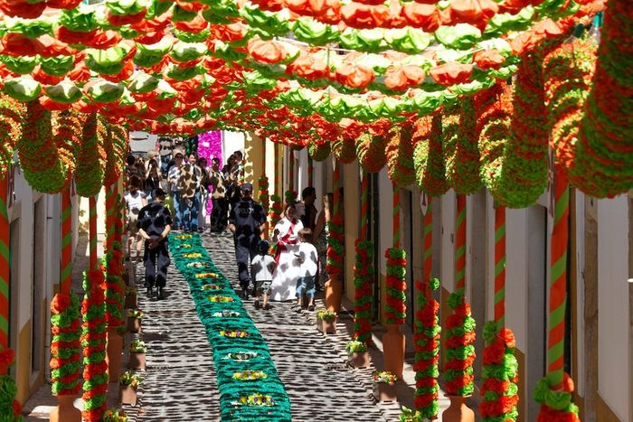 Arts Culture And Entertainment Culture Decoration Flowers Multi Colored Portugal Streetphotography Tomar