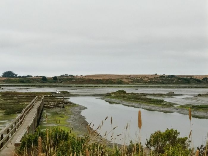 Beautiful Nature Elkhorn Slough On The Way Nature Photography EyeEm Nature Lover Nature Scenic Nature_collection Landscape_photography Landscape Bridges Low Tide Beauty In Ordinary Things
