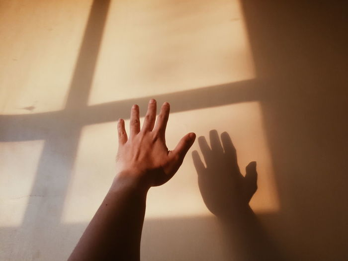 windowed Window Sunset Golden Hour Human Hand Shadow Reaching Sunlight Child Palm Hand Close-up Human Finger Personal Perspective Focus On Shadow