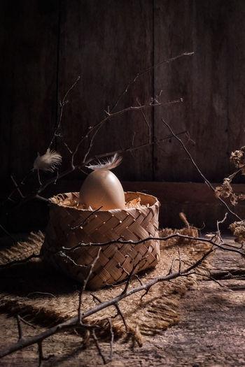 one egg Egg