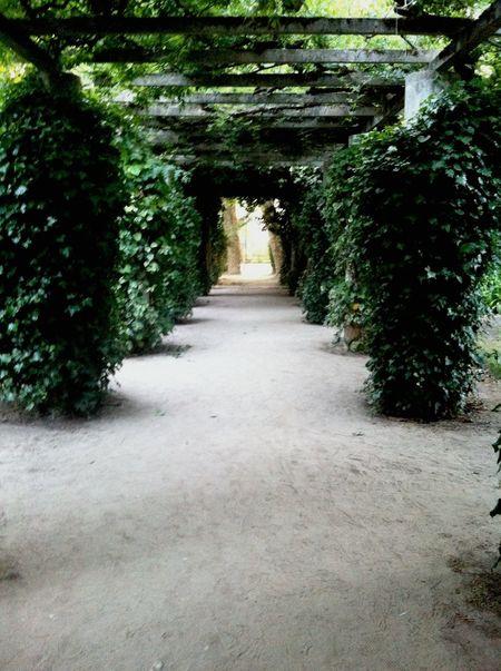 Walking Around Escaping Everyday Joy