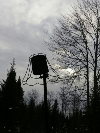 Fire Pit Smoke - Physical Structure Smoke You Have To Be There!! Old Lamp Coffee Can Recycle Silhouette Tree Low Angle View No People Bare Tree Sky Outdoors Nature
