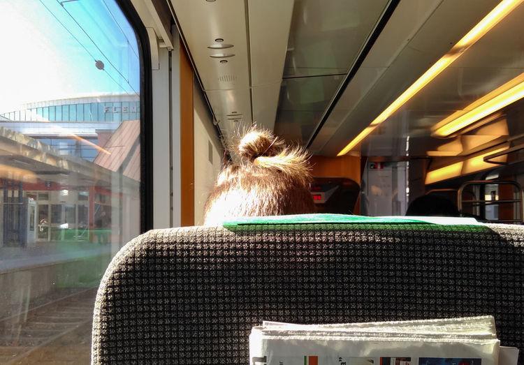Close-up of man bun in train