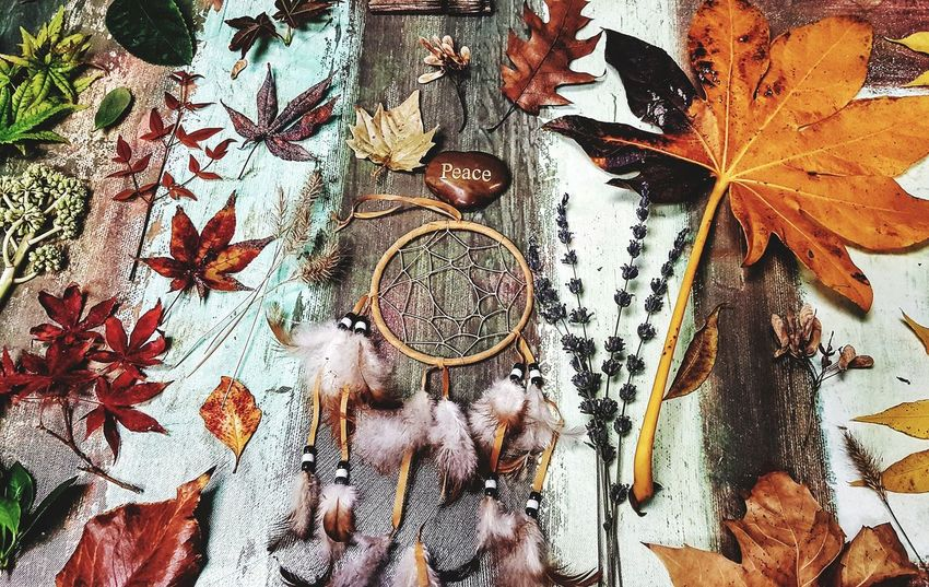 Backgrounds Close-up Full Frame Fall Colors Fall_collection Fall Beauty High Angle View Nature On Your Doorstep Inspire Create Fall Leaves Peace No People Macro World Crafted Beauty