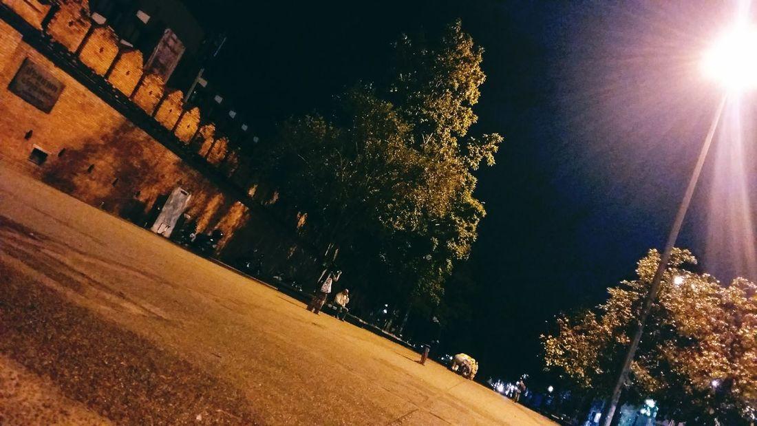 To Night >>>