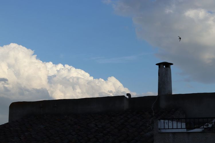 Low angle view of seagull on roof against cloudy sky