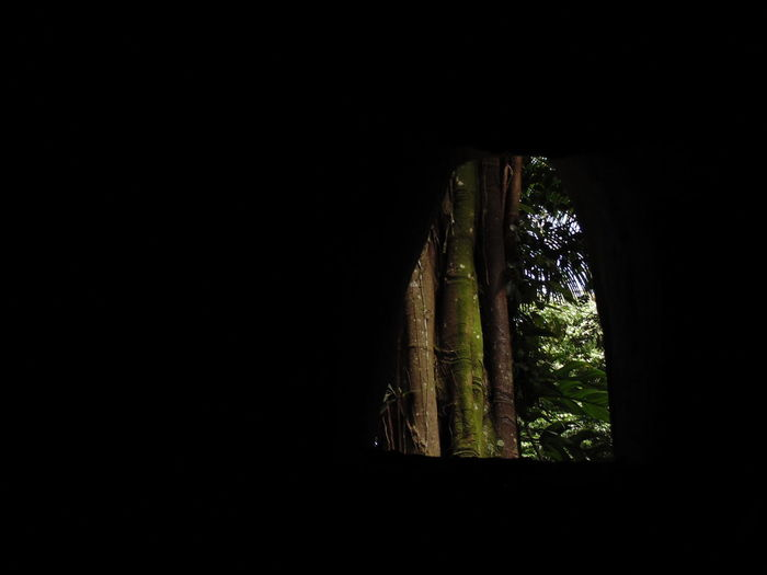 Cave Dark Hole In The Wall Indoors  Nature No People