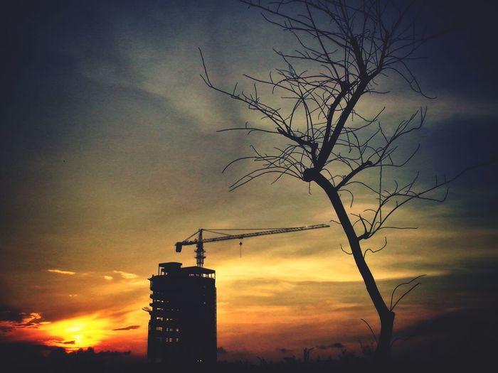 """AKU"" ingin hidup 1000 tahun lagi Taking Photos Silhouette Sunset Cityscape"