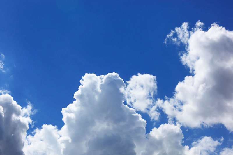 clouds in the sky, cumulus clouds Atmosphere Backgrounds Beauty In Nature Blue Cloud - Sky Cloudscape Day Idyllic Low Angle View Meteorology Nature No People Outdoors Scenics - Nature Sky Softness Tranquil Scene Tranquility White Color
