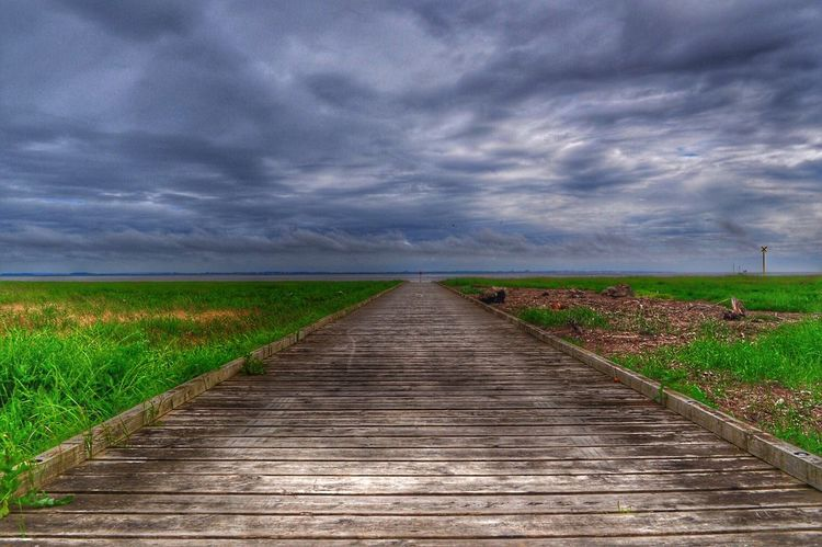 Strange weather means great lighting. Pier Wooden Walkways Wooden Walkway Wooden Weather Sea And Sky Shootermag Lytham Lancashire Walkway Great Light Green Grass Sky And Clouds Sea View EyeEm Nature Lover EyeEm Gallery EyeEm X Getty Images EyeEm X WhiteWall: Landscap Outdoors Nature On Your Doorstep Natural Beauty Infinity No People EyeEm Green Color
