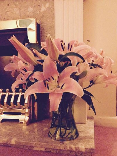 Flowers MyBoy Awww Beautiful
