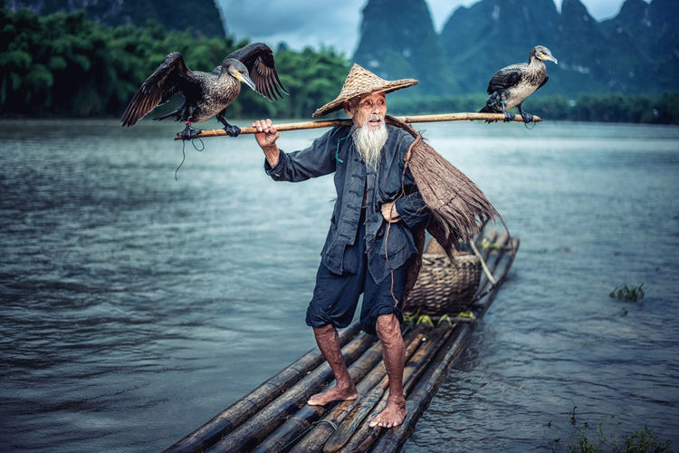 Birds perching on stick held by man on wooden raft in lake