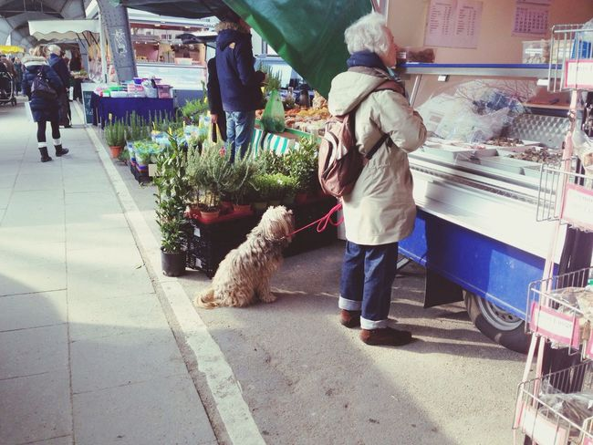 An dem Stand gibt es Hundefutter. Ich lach mich immer tot, wie brav die Hunde da alle sitz machen und ehrfürchtig nach oben starren