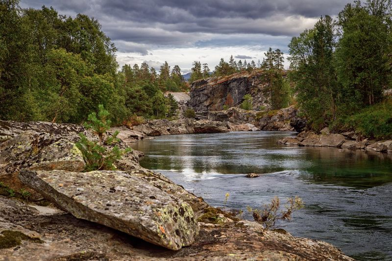 River Forest Stone Norway Nature Norway Tree Plant Water Cloud - Sky Nature Tranquility Sky Tranquil Scene Beauty In Nature No People Day Land Rock