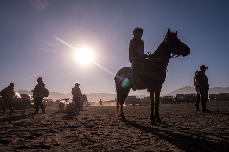People riding horse on beach