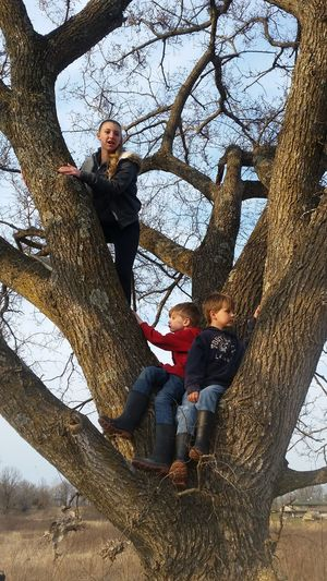 Missouri Ozarks, USA 💥💖 Bare Happy Playing Looking Up Family 💙💚💛 Imagination Pretend Rural Climbing A Tree Tree Childhood Child Full Length Togetherness Bonding Boys Happiness Two Generation Family Outdoor Play Equipment
