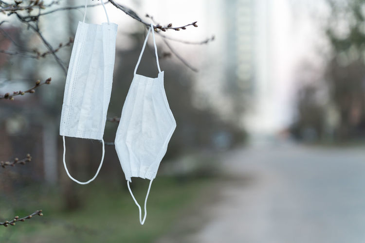 Close-up of clothespins hanging on tree in city
