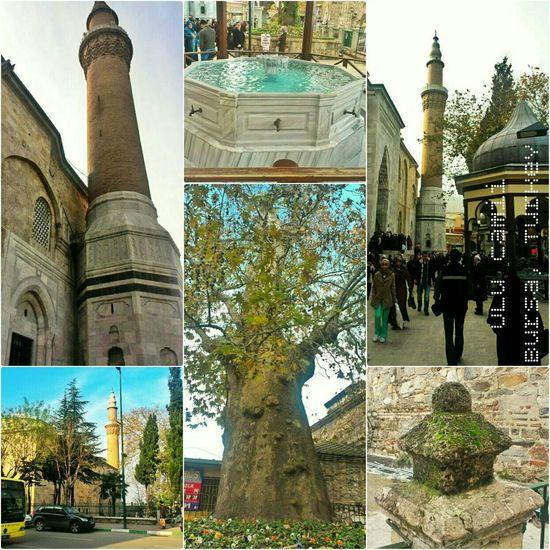 Ulucami Bursa Turkey Cami şadırvan Tarih  çınar