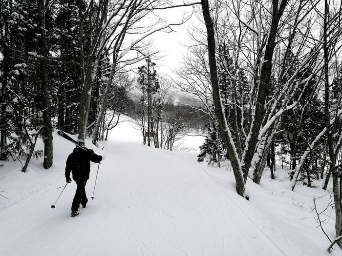 Man with ski poles walking on snow covered field amidst bare trees