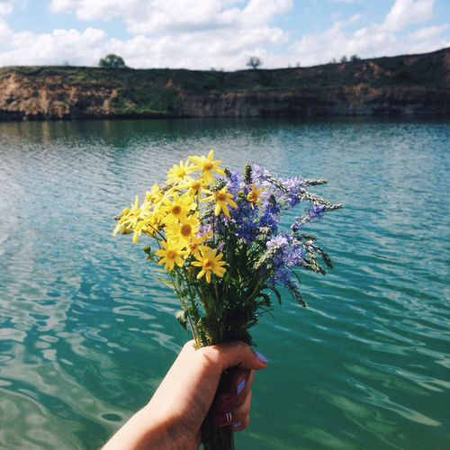Cropped Image Of Hand Holding Flower By Lake Against Sky