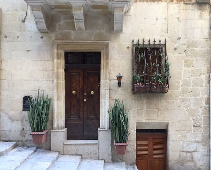 Window Building Exterior Built Structure Architecture Potted Plant Door Plant Closed Growth Day Outdoors Houseplant Historic Malta Valetta