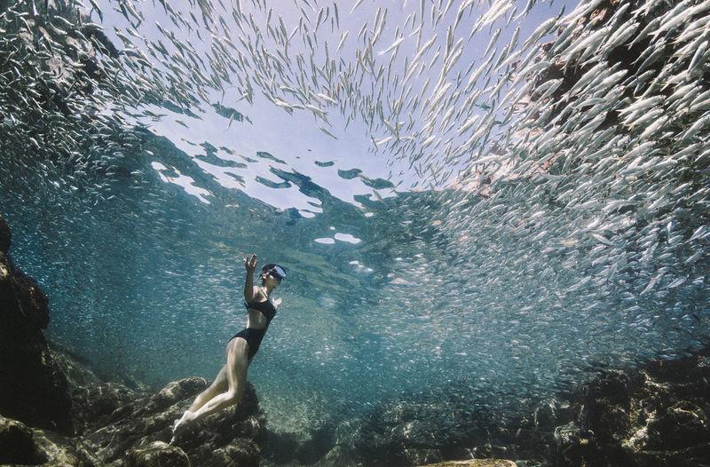 Full length of woman standing undersea