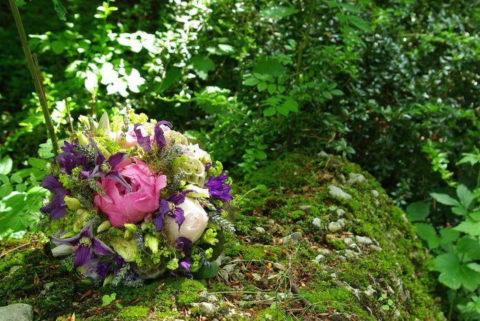 Colour Of Life Wedding Bouquet Bridal Bouquet Wedding Beauty In Nature Blooming Blossom Botany Close-up Day Flower Millennial Pink Focus On Foreground Fragility Freshness Green Green Color Growing Colour Palette In Bloom Leaf Lush Foliage Nature No People Outdoors