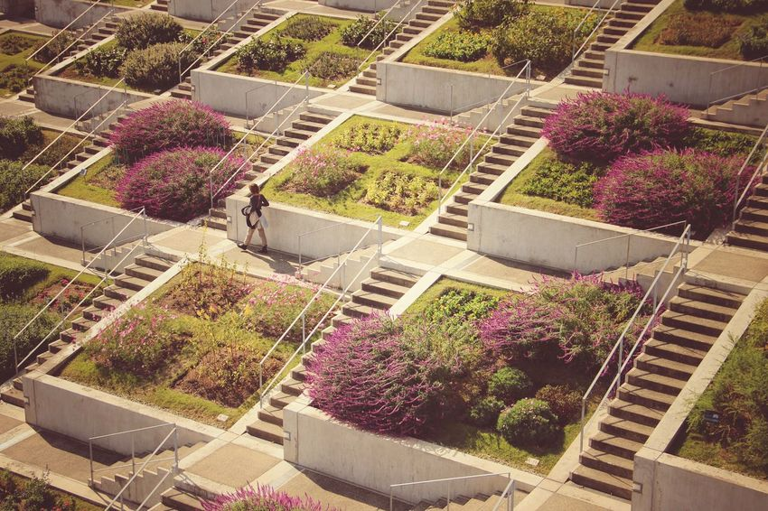 Awaji Yumebutai | Tadao Ando | Architecture Garden Growth Nature Beauty In Nature Personal Perspective Fine Art Japan Through My Eyes My Year My View Travel Beautifully Organized Traveling Snap a Stranger Textured  Lifestyles Urban Space Autumn Colors Awaji Island Japan |