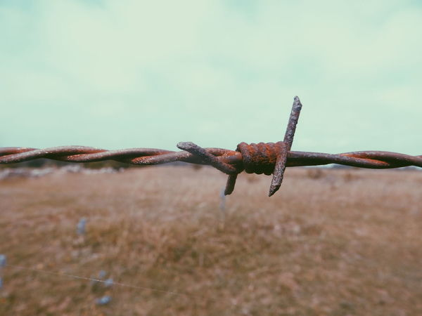 barded wire Wire Barded Bardedwire Braded WireRust Rusty Protection Protected Area Abandoned Forbidden Places Field Sky Countryside