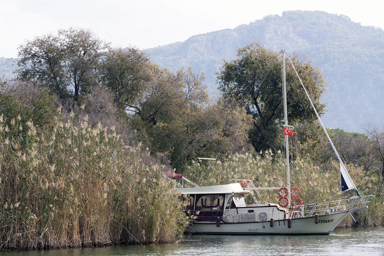 Beauty In Nature Boat Dalyan çayı River Day Growth Idyllic Lycian Tomb Mode Of Transport Mountain Mountain Range Nature Nautical Vessel Non-urban Scene Outdoors River Rushes Sailing Scenics Tranquil Scene Tranquility Tree Turkey Vacations Water Waterfront