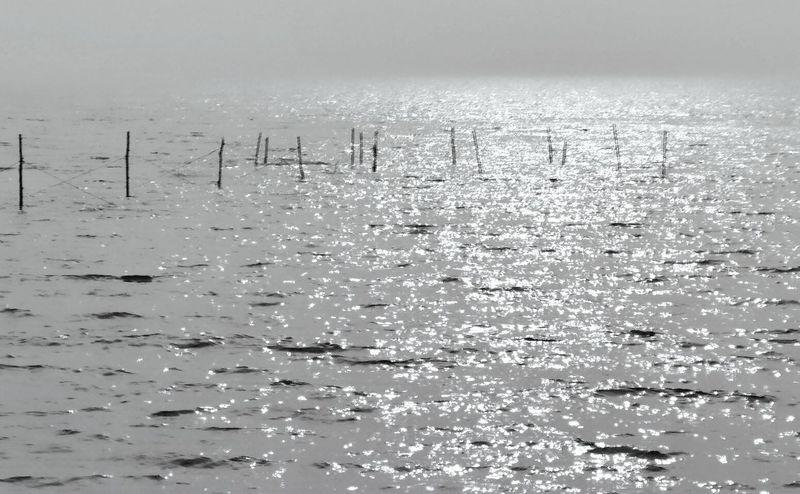 Nature Yangtze River Water