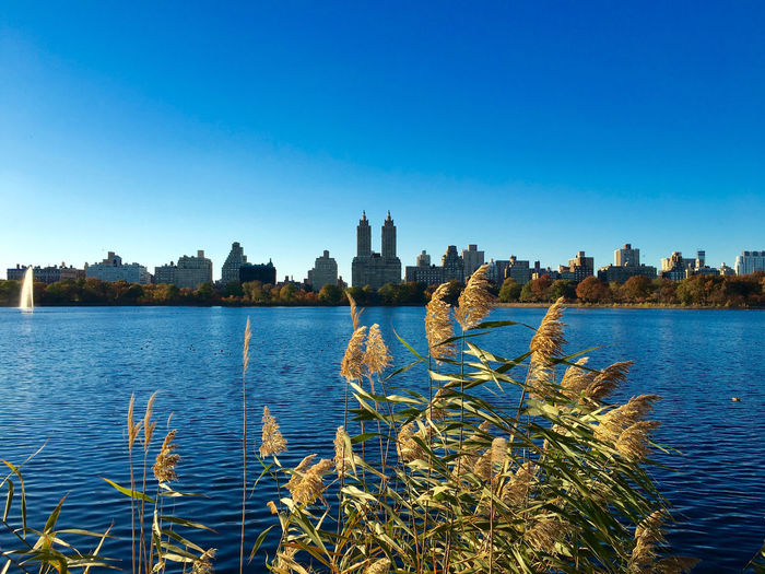Lake At Central Park By The Eldorado And City Against Clear Blue Sky